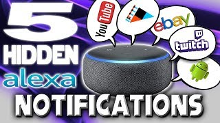5 Hidden Alexa Notifications & How To Enable Them
