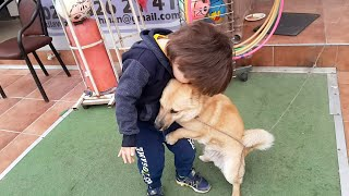 Gambar cover Bu köpeğin dostluğu herkesi çok şaşırtıyor