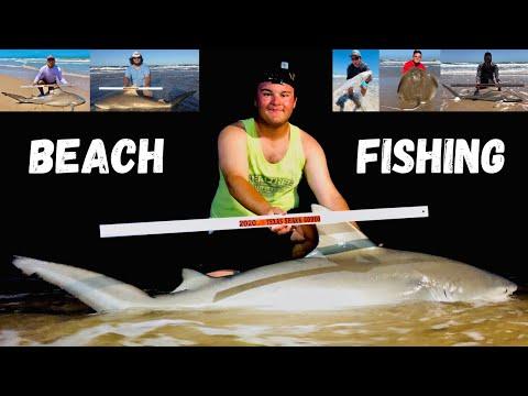 24 Hour Shark Fishing Trip (South Padre Island)