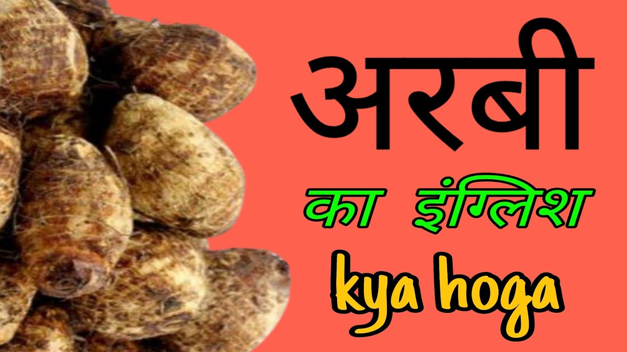 Arbi Ka English Arbi Ka English Kya Hota Hai Arbi Ko English Mein Kya Bolte Hain Youtube Well, this hindi word is a neuter and can be used for male and female; arbi ko english mein kya bolte hain
