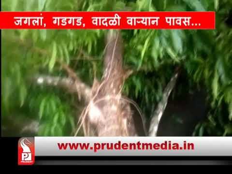 Prudent Media Konkani News 16 May18 Part 1