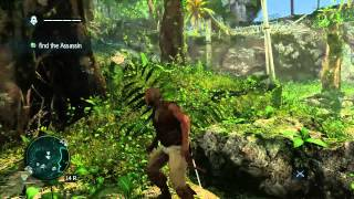 Assassins Creed IV Black Flag PC Gameplay (Max Settings) 1080p