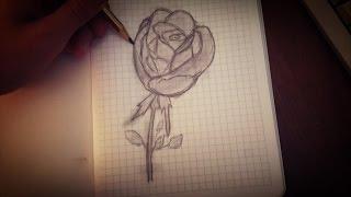 Как нарисовать розу?//Рисуем розу поэтапно карандашом ^-^(Привет!В этом видео я попыталась вас научить как рисовать розу :3 Надеюсь кто то из вас освоил это ;) Спасибо..., 2016-06-01T12:45:53.000Z)