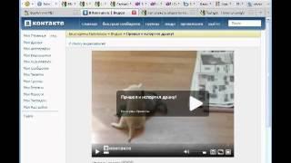 Как скачать видео с любого сайта в Интернете(В интернете довольно часто встречаются вопросы: Как скачать видео с YouTube ? Как скачать видео в контакте ?..., 2011-09-12T23:49:14.000Z)