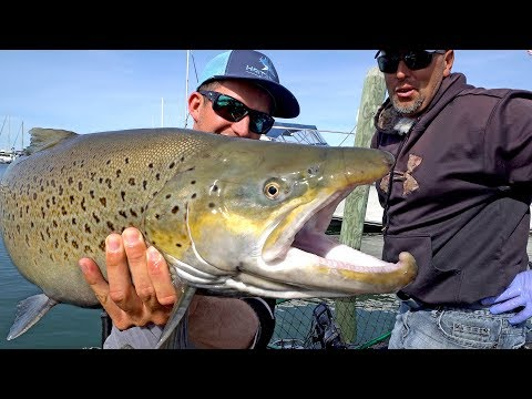 Fishing for Monster Brown Trout by Downton Milwaukee on Lake Michigan - ft. Eric Haataja - 4K