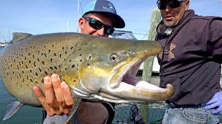 Fishing for Monster Brown Trout by Downtown Milwaukee on Lake Michigan - ft. Eric Haataja - 4K