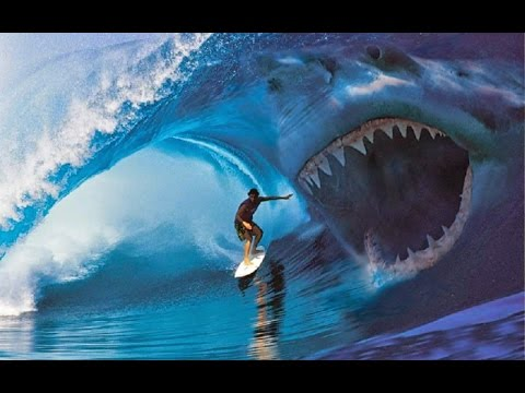 WORLDS BIGGEST SHARK EVER CAUGHT ON CAMERA MEGALODON 2014Worlds Biggest Shark Megalodon Caught On Camera