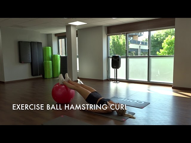 Exercise Ball Hamstring Curl