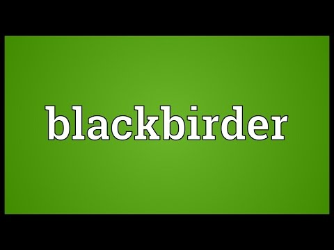 Header of blackbirder