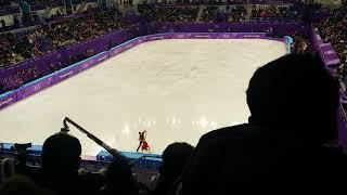 2018 Olympic Winter Games Maia Shibutani&Alex Shibutani FD