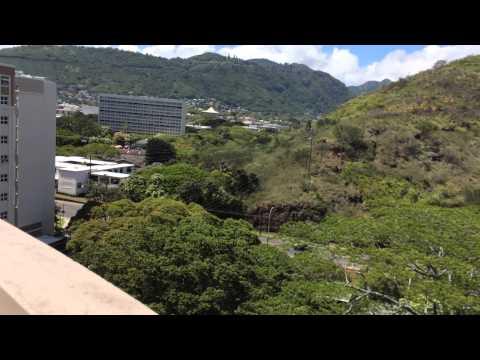 Freshman Dorm Towers at UH Manoa