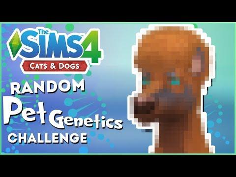 Now With Horse Genes!! 🎲 Random Pet Genetics Challenge!!