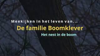De Boomklevertjes bij hun boomhuisje
