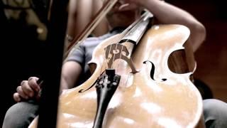 Mieczysław Wajnberg String Quartet no 7 & Piano Quintet / Silesian Quartet, Piotr Salajczyk