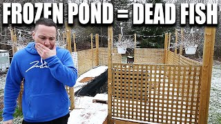 The pond will freeze, the fish will die - The king of DIY