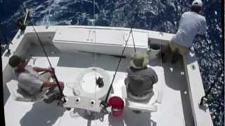 3-13-14-12 LEE KERNEN WAHOO & SAIL FISH-H.264 HD for You Tube.mov