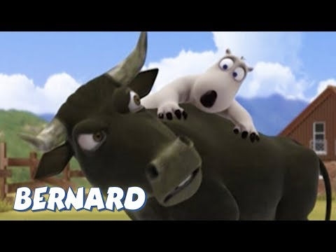 Bernard Bear | Bullfighter AND MORE | 30 min Compilation | Cartoons for Children