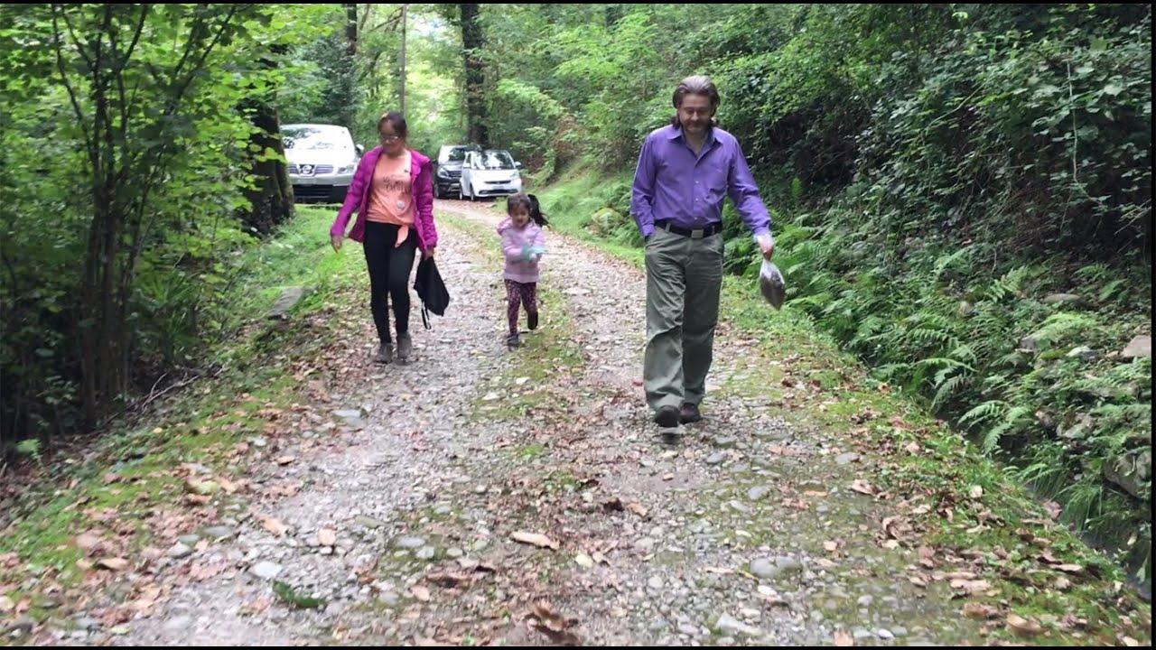 Vlog 12: Vào Rừng Đi Dạo Và Lượm Hạt Dẻ