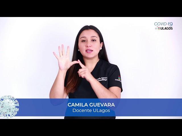 COVID19 ULagos - Consejo Camila Guevara