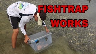 HOMEMADE FISH TRAP WORKS👍🏻 RIVER Monsters Spotted