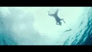 Hidden Dragon - Swimming in the Dark