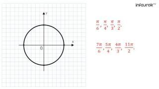 Числовая окружность