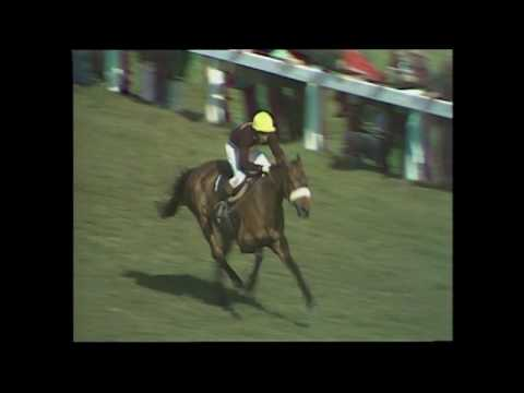 1977 Grand National - Red Rum's third victory