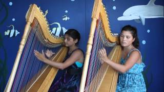 Luz Marina Harp Duo - Pájaro Campana