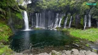 beautiful-nature-whatsapp-status-