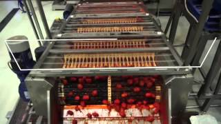 видео Оборудование для мойки овощей на консервном заводе