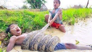 Cậu bé 7 tuổi đi bắt trăn khổng lồ và cái kết hài hước