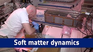 Horizons science – soft matter dynamics