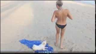 Lucu Bingit Cewek Cantik Kutangnya Tali Bh Dilepas Anjing Sampai Hampir Telanjang