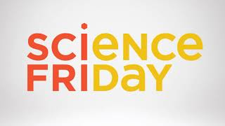 Science Friday - Goes To The Movies: First Man, Driverless Car Ethics, Beetle Battles- Part 2