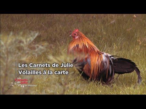 Les volailles à la carte - Les carnets de Julie
