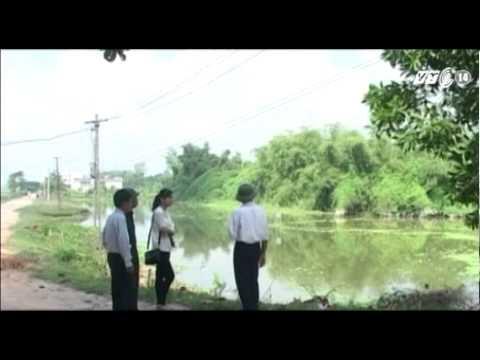 VTC14_Nhiều khó khăn trong bảo tồn đảo cò Triệu Sơn