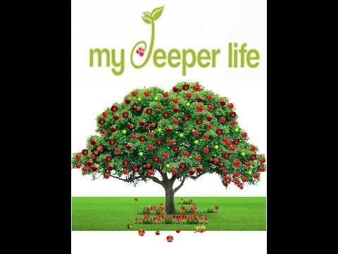 My Deeper Life with Larry Williams and JiNan George 10/11/14