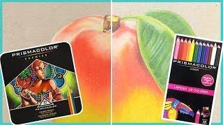 Diferencias entre prismacolor premier y prismacolor junior