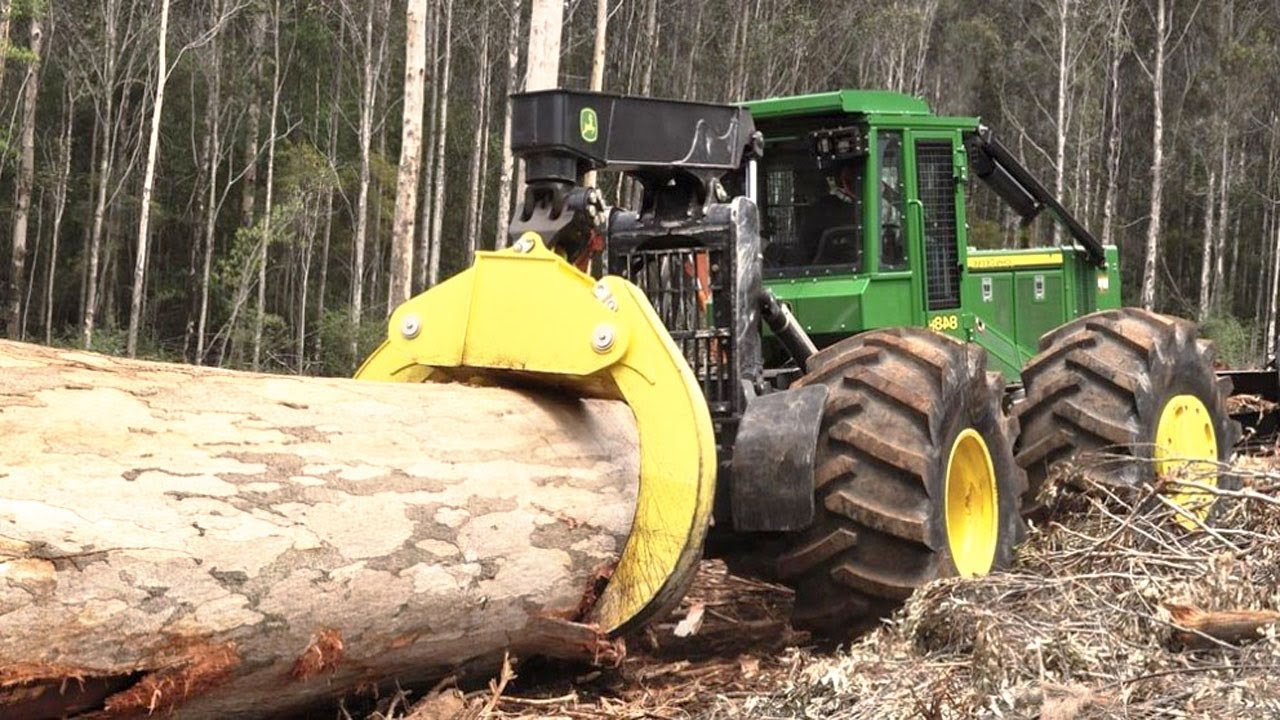 World's Modern Heavy Machine Working - Fast Skill Hydaulic Equipment Shredder Big Tree, Shear S