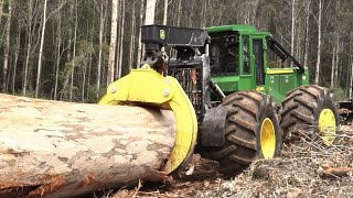 World's Modern Heavy Machine Working - Fast Skill Hydaulic Equipment Shredder Big Tree, Shear Stump