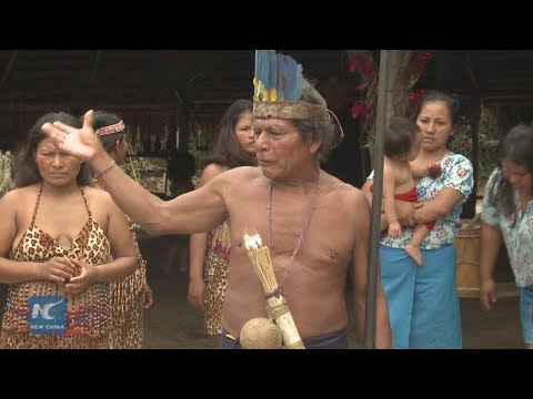 New life of the fearsome jivaro tribe in the Peruvian Amazon