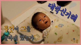[신생아 놀라는 영상] 생후 21일|모빌보고 놀라는 아…