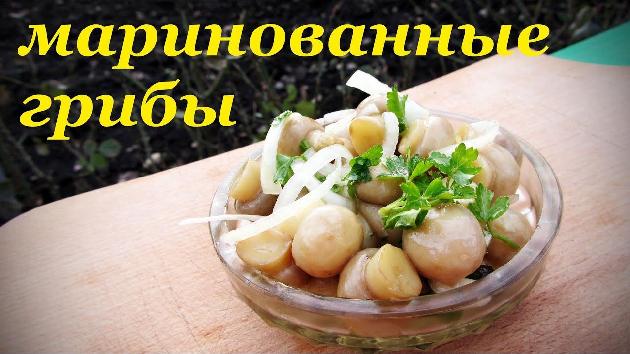 Салат с листьями салата рецепты с яйцом