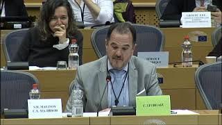 Intervención Consejo de Informativos TVE ante Comisión de Peticiones Parlamento Europeo