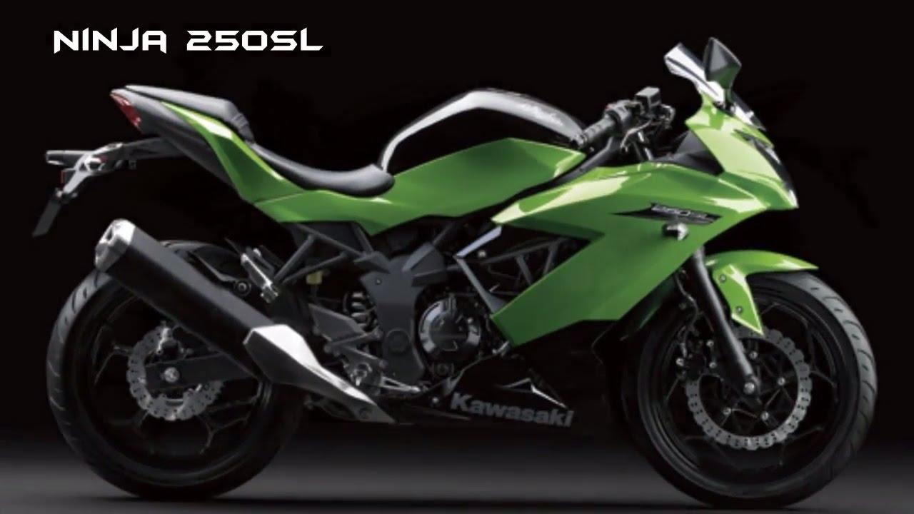 2016-2017 Kawasaki Ninja 250SL (Ninja RR Mono) : RACY SUPER ...
