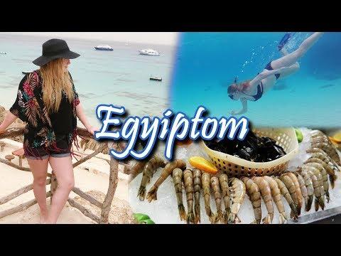 RENGETEG HERKENTYŰ!   Egyiptom   Mit Ettem Ma? #4