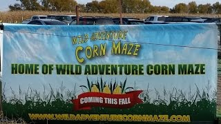 Wild Adventure Corn Maze