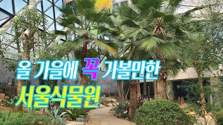 [서울 강서구] 올 가을에 꼭 가볼만한 곳, 서울식물원