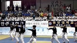 Taekwondo Aerobics 9 hanmadang 29.08.2012