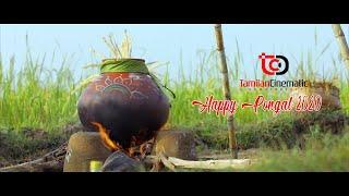 Happy Pongal 2020
